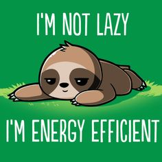 I'm Energy Efficient