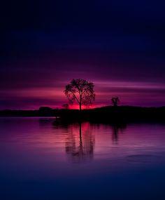 "coiour-my-world: "" Morning view at Dyke Marsh Wildlife Preserve, Potomac River, Washington, DC "" Sunset Wallpaper, Nature Wallpaper, Beautiful Sunset, Beautiful World, Nature Pictures, Cool Pictures, Color Of Night, Jolie Photo, Sunset Photography"