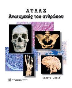 ΑΤΛΑΣ ΑΝΑΤΟΜΙΚΗΣ ΤΟΥ ΑΝΘΡΩΠΟΥ (2Η ΕΚΔ.) - Παρισιάνου Α.Ε. Skull, Skulls, Sugar Skull