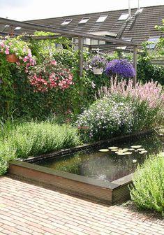 veel groen, weinig werk, planten rondom de vijver
