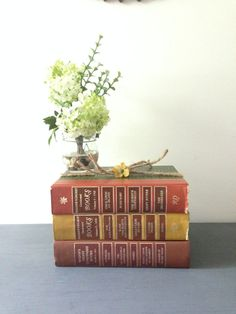 STACK of VINTAGE BOOKS Decorative Book by AnnmarieFamilyTree