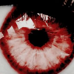 Red eyes are kind of a large part of the story. Red Aesthetic, Character Aesthetic, Paramore, Storyboard, Twilight, Alluka Zoldyck, Karin Uzumaki, Mileena, Aizawa Shouta
