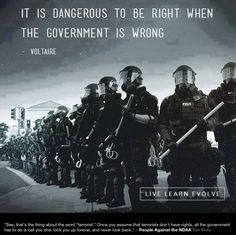 """It is dangerous to be right when the government is wrong."" Voltaire quote on free thinking Live And Learn, New World Order, We The People, Wise Words, Freedom, Religion, Thing 1, Sayings, American"