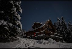 A Cabin Under the Stars