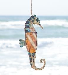 Bottle Seahorse in Holiday 2012 from Wind & Weather on shop.CatalogSpree.com, my personal digital mall.
