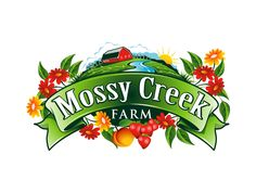 I so see this farm logo on jam bottle with all sorts of fruit. Summer logo design.