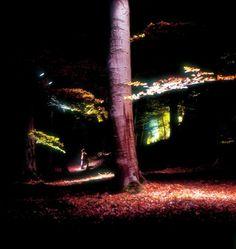 Lights in Alingsas - Nolhaga Berg 3, 2000 -