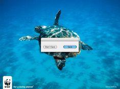Save, please :)