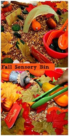 Fall Homeschool Fall sensory bin with non-food fillers. More How To Choose A Chandelier Based On Sty