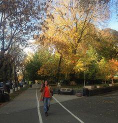 Złota jesień mi się przedłużyła. #autumn #november #colors #yerevan #armenia #orangesweater #orangeisthenewblack #autumnoutfit