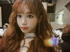 ♡ yeehaws in japanese Kpop Girl Groups, Kpop Girls, Sweet Girls, Cute Girls, Pretty Girls, Stephanie Laurens, Sakura Miyawaki, Pre Debut, Fandom