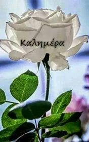 Beautiful Pink Roses, Mom And Dad, Good Morning, Diy And Crafts, Quotes, Greek Sayings, Buen Dia, Quotations, Bonjour