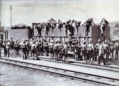 British infantry board an armored train in the Boer War. Horace W. British Armed Forces, British Soldier, British Army, Naval History, Military History, World Conflicts, British Colonial, Panzer, African History