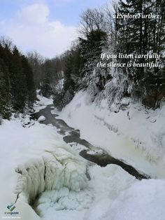 Silence in Winter