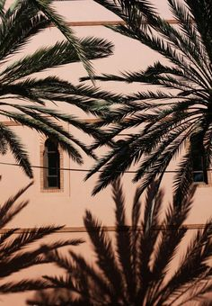 Eating Out – La table par Yannick Alléno at Royal Mansour, Marrakech Yannick Alléno, Turbulence Deco, Tropical Vibes, Tropical Heat, Summer Of Love, Palm Trees, Palm Tree Art, Summer Vibes, Iphone Wallpaper