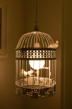 bird cage lamp - do with Ikea solar bird lights..id take out the bites and keep the cage.