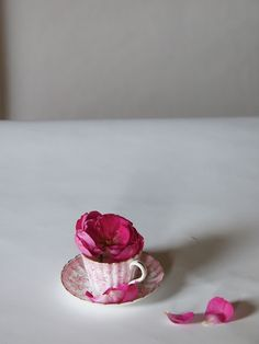 cup and saucer, flower