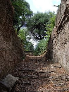 A staircase in ruin on the Palatine Hill, Rome.