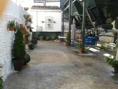Andalusian PATIO in Oleícola San Francisco olive mill facilities