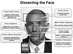 Deciphering The Face: A Visual Body Language Guide By Joe Navarro. Deciphering The Face: A Visual Body Language Guide By Joe Navarro. Psychology Books, Psychology Facts, Emotion Psychology, Reading Body Language, Understanding People, Coaching, Face Reading, How To Read People, Human Behavior