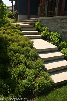 outside stairs concrete floating Entry Stairs, Exterior Stairs, Home Garden Design, Diy Garden, Garden Paths, Front Walkway, Front Steps, Outside Stairs, Hillside Landscaping