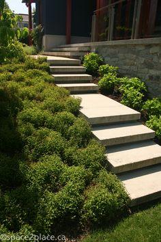 concrete steps (Entrance Step Design)
