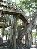 Parque Colón - ZeePuertoRico.com