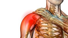 One Exercise for Total Shoulder Health