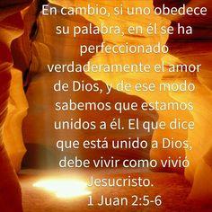 En cambio, si uno obedece su palabra, en él se ha perfeccionado verdaderamente el amor de Dios, y de ese modo sabemos que estamos unidos a él. El que dice que está unido a Dios, debe vivir como vivió Jesucristo.