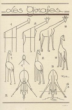 how to draw giraffes