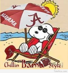 Roll Tide! University of Alabama Crimson Tide pictures from TidePics.com!