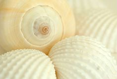 Spiral - photo by Monika Sapek