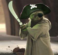 Yoda pirate. you are beautiful