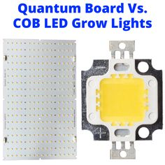 Both COBs and quantum board give you full spectrum white light that is great for plants. But there is one key difference that determines which is best for you. Led Horticole, Diode Led, Led Cob, Led Board, Led Fixtures, Light Works, Types Of Lighting, Different Light, Lampe Led
