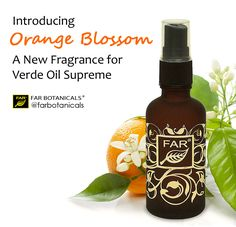 Our Limited Edition version of Verde Oil Supreme presents the same excellent hair conditioning serum oil as our standard VOS, but scented with some of our rarer natural aroma materials.   Made from 100% natural extracts of orange flowers, the complex character of Orange Blossom is on full display in this fragrance. Creamy, white floral notes flirt with being sweet, and delicate only to have the bold, shameless sensuality of a smoky base note wreathed with a citrus-kissed hint of spic..