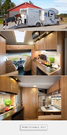 Polar Multi 800 - combination motor home and horse box. - created via https://pinthemall.net