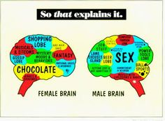 Imposed Cultures: Men Are From Mars, Women Are From Venus ...