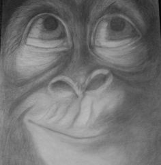 realistic graphite monkey drawing by 1bluwall on Etsy