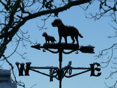 Liked the snow on this garden Weather vane.