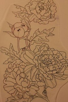 Peony tattoo. I'd totally get this as a half sleeve... But no bugs.