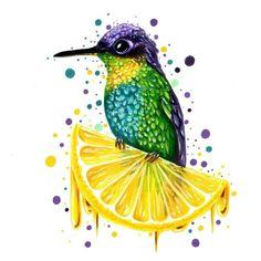 Kolibri art Hummingbird, Abs, Phone Backgrounds, Little Birds, Animales, Crunches, Hummingbirds, Abdominal Muscles, Killer Abs