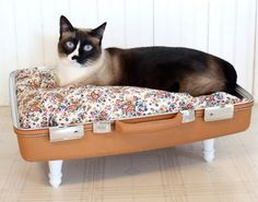 vintage suitcase cat bed ~> tooo cute :) and easy to do too, I could probably just put a pillow in it and it would look the same