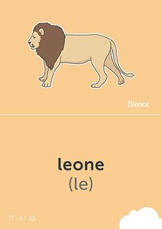 Leone #CardFly #flience #animals #italian #education #flashcard #language