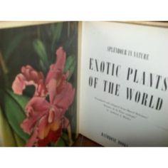 Marcel Belvianes -SPLENDOUR IN NATURE - EXOTIC PLANTS OF WORLD - 1955 1ST ED .BATHBONE HARDB PLATES