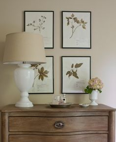 Monochromatic vignette with soft mocha walls and framed botanical prints hang above a beautiful vintage chest. Upon the chest, a white milk glass with linen shade and a white urn vase are lovely touches to this cozy space.