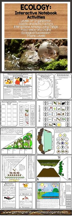 Ecology, ecosystems, interactions, food webs, energy pyramid, biomes, cycles in nature, and more for science interactive notebooks!