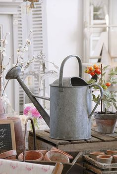 Watering can, I want one of these.Got one. A little dented, but who cares.