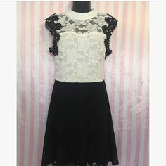 Small dress Lace dress  Black and white party Stretch  Zips up Open back Nwot Dresses
