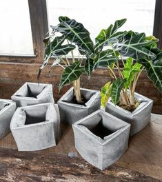 Concrete draping tutorial tests of 8 kinds of different fabrics amp fibres for portland cement dipping to make draped concrete pots or characters – ArtofitGorgeous textured round and square concrete planters made with silicone molds. Diy Concrete Planters, Concrete Crafts, Concrete Garden, Concrete Projects, Diy Planters, Rock Planters, Beton Design, Concrete Design, Cement Art