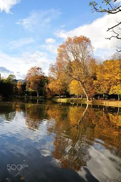 Parco di Villa Puccini - Pistoia #FoliageinItaly #Italia #Italy #ilikeitaly #autumn #autunno #foliage #leaves #Toscana #Tuscany #Pistoia